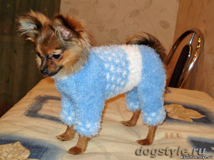 маленьких собак вязание